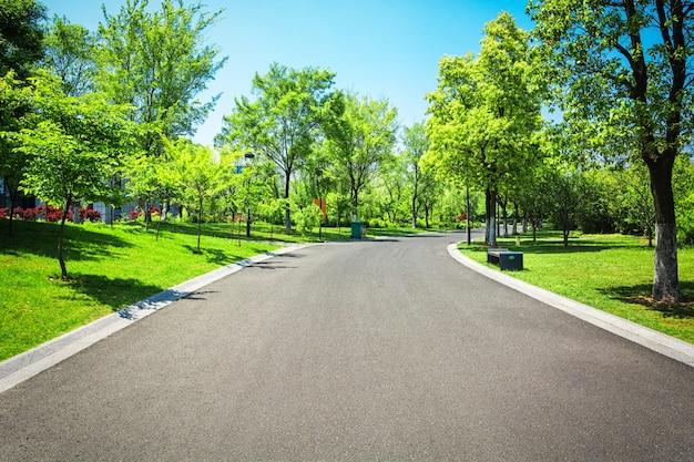 Piękny park miejski