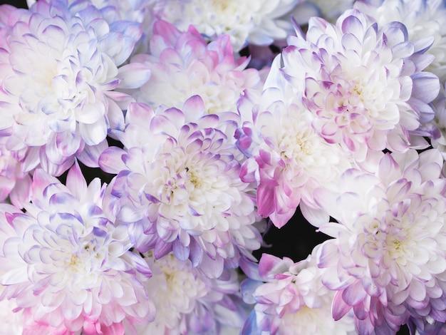Piękny pastelowy bukiet kwiatowy