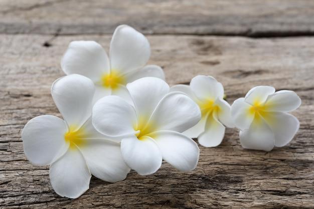 Piękny plumeria lub świątynia, zdroju kwiat na nieociosanym drewno stole