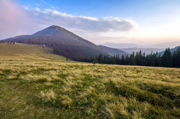 Piękny pokojowy widok zielony trawiasty stromy skłon i wiejskie małe chłopskie budy przy stopą wspaniałej odległej karpackiej góry na ukraina w jaskrawym pogodnym letnim dniu.