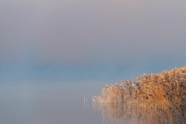 Piękny poranek o wschodzie słońca, świt, mgła kłębi się wokół wczesnozimowego krajobrazu.