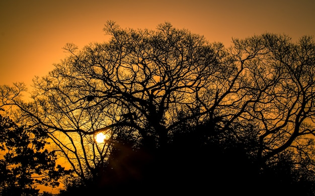 Piękny poranek wschód słońca widok w naju korei południowej