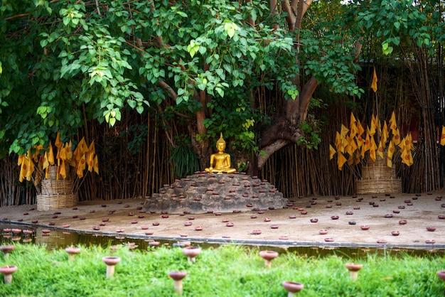 Piękny posąg złotego buddy w świątyni wat pan tao z kielichem świec, chiang mai, tajlandia