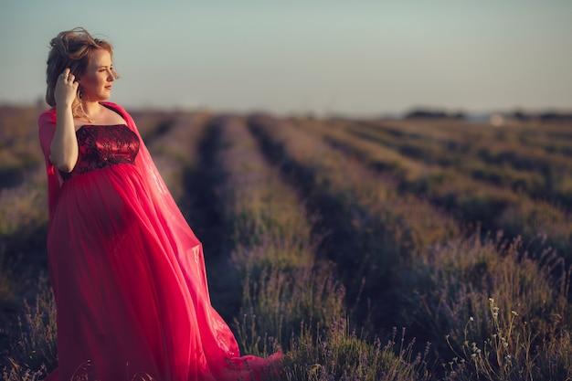 Piękny provence kobieta w ciąży relaksuje w lawendy pola dopatrywaniu na zmierzchu mienia koszu z lawendowymi kwiatami. seria. kusząca dziewczyna z fioletową lawendą. blond dama w polu kwiat