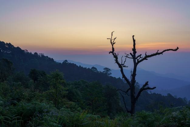 Piękny punkt widokowy kewfin znajduje się w parku narodowym chae son w pobliżu wioski mae kampong o zmierzchu, chiang mai, tajlandia