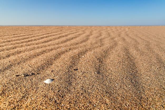 Piękny pusty piasek fala tekstura plaży.