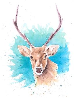 Piękny ręcznie malowany akwarela jelenia na papierze.
