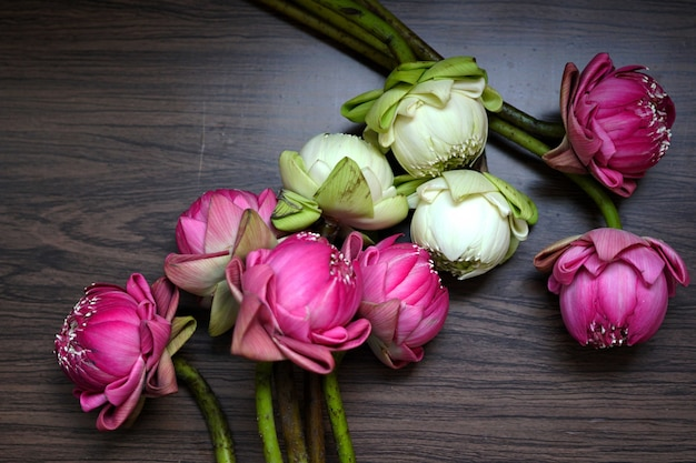 Piękny różowy i biały kwiat lotosu do modlitwy buddy na drewnianym tle