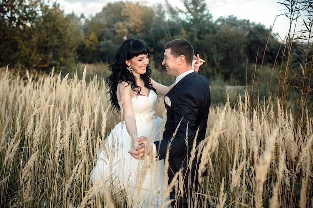 Piękny ślub para siedzi w lesie na zwalonym drzewie