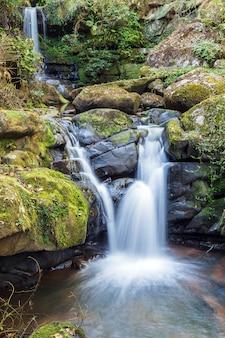 Piękny spadek wody z natury tle.