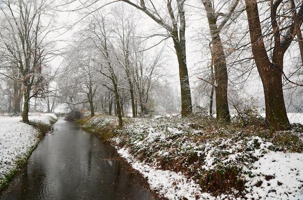Piękny strumień płynący przez pokryty śniegiem trawiasty brzeg i drzewa