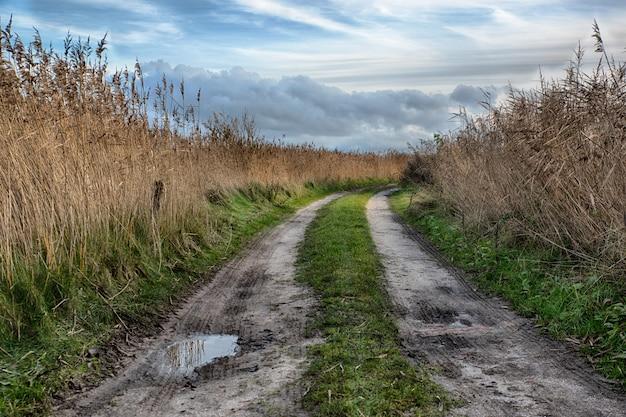 Piękny strzał droga przemian po środku pola na wsi
