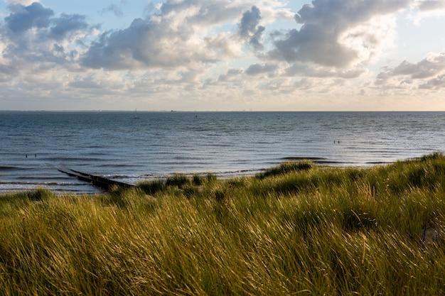 Piękny strzał piaskowata plaża pod chmurnym niebem w vlissingen, zeeland, holandie