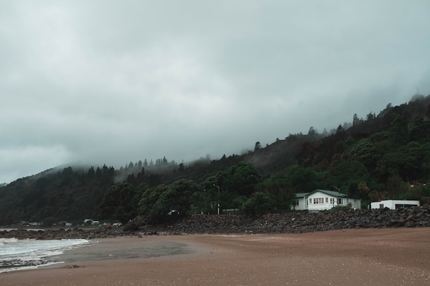 Piękny strzał samotnego domu przy mglistym wybrzeżu z pięknym lasem za sobą - koncepcja horroru