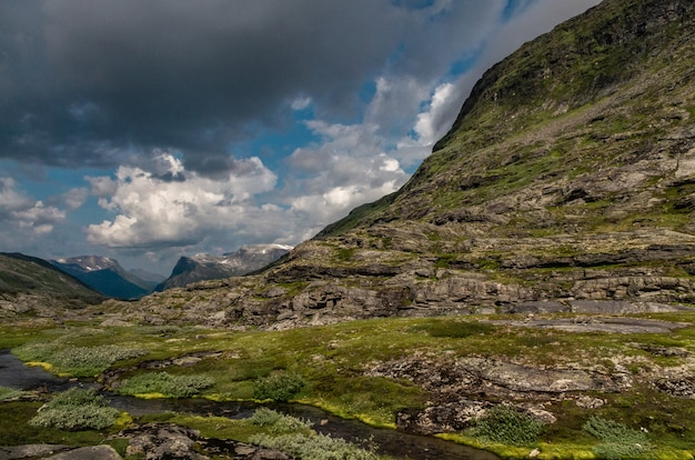 Piękny strzał wysokie formacje skalne pokryte trawą w norwegii