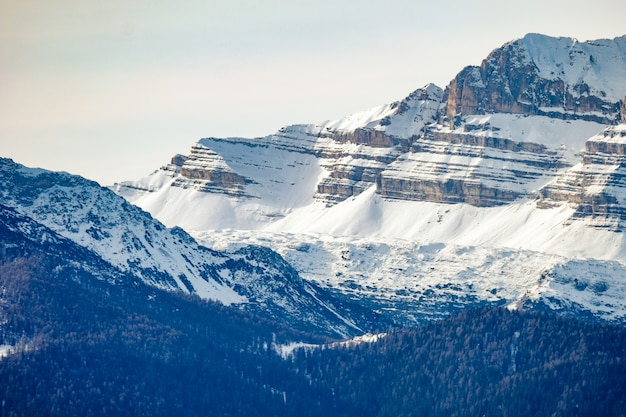 Piękny strzał zalesieni wzgórza blisko śnieżnej góry w słonecznym dniu