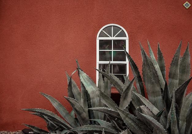 Piękny szczegółowy widok pintoe langit dahromo bantul w indonezji