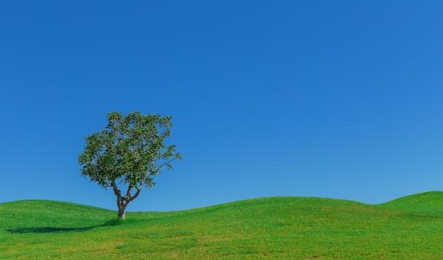 Piękny tło łąk i nieba drzewo.