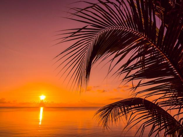 Piękny tropikalny plażowy morze i ocean z kokosowym drzewkiem palmowym przy wschodu słońca czasem