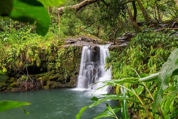Piękny tropikalny wodospad na hawajach