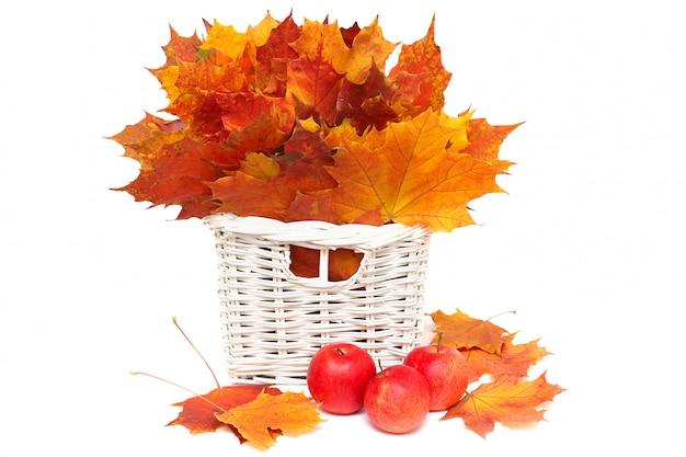 Piękny układ jesień liście i czerwoni jabłka odizolowywający na bielu