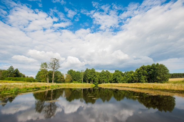 Piękny wciąż jezioro z drzewami na horyzoncie i białymi bufiastymi chmurami na niebie. spokojny letni dzień w domku. duże zielone drzewa na jeziorze
