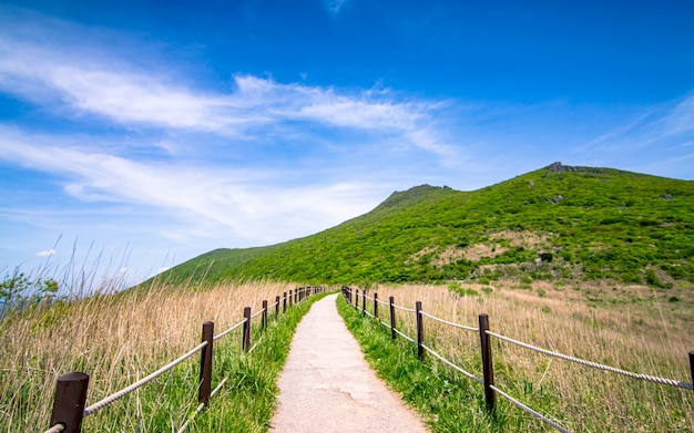 Piękny widok halny mudeungsan park narodowy gwangju, południowy korea.