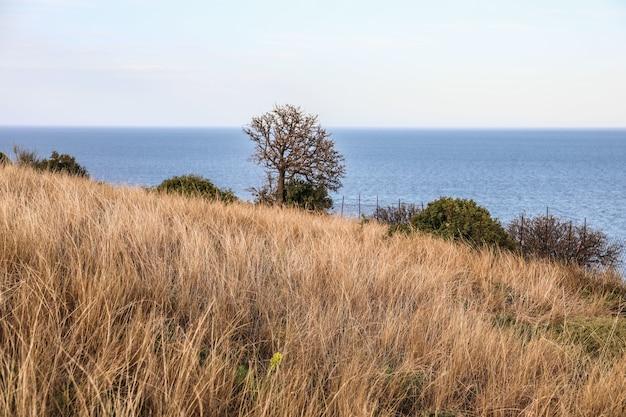 Piękny widok na błękitne morze od wybrzeża na wyspie skiathos w grecji