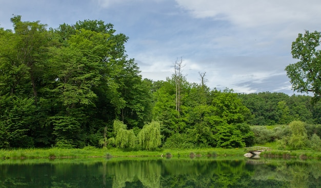 Piękny widok na bujną przyrodę i jej odbicie na wodzie w parku maksimir w zagrzebiu w chorwacji