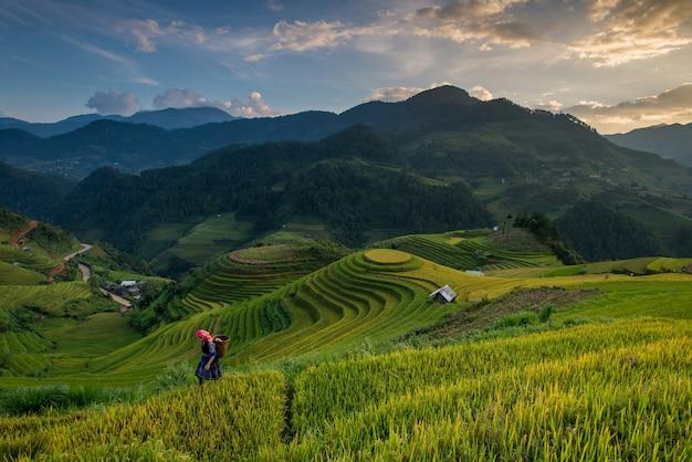 Piękny widok na dom i wioskę na tarasie ryżowym rolnik wraca do domu w mu cang chai, wietnam