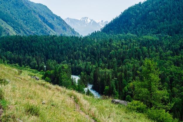 Piękny widok na duży lodowiec za doliną rzeki z bujnym lasem.