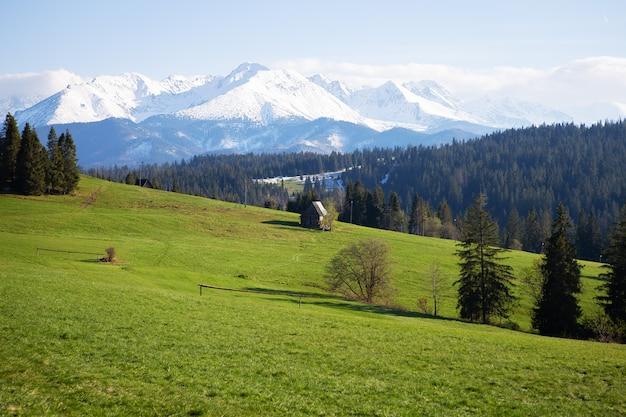 Piękny widok na górski krajobraz, tatrzański park narodowy, polska. wysokie tatry, karpaty