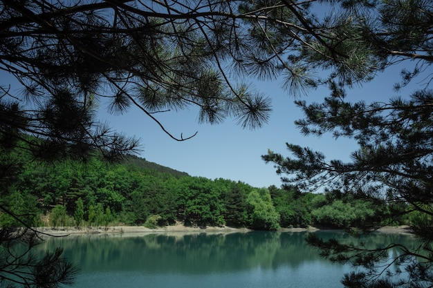 Piękny widok na góry przez gałęzie drzew liściastych. jezioro, morze, krym