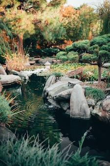 Piękny widok na hipnotyzującą przyrodę w tradycyjnie urządzonych japońskich ogrodach adelaide himeji