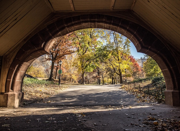 Piękny widok na jesienny park przez kamienny łuk