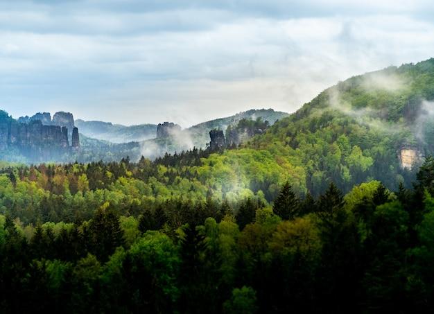 Piękny widok na krajobraz czeskiej szwajcarii w czechach z drzewami