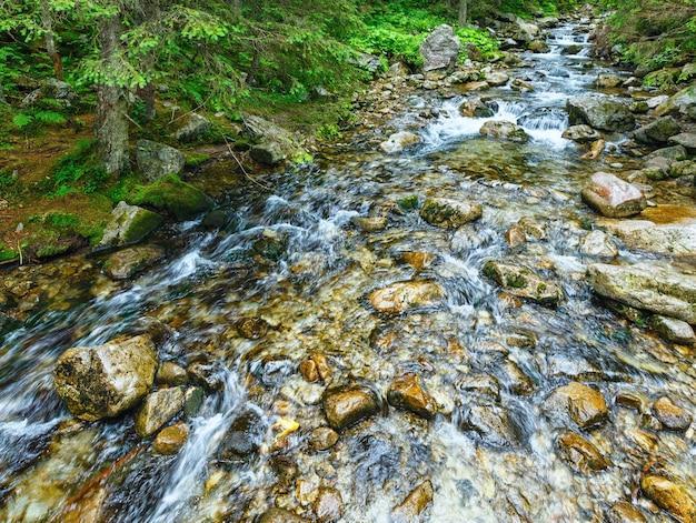 Piękny widok na letnią rzekę górską z czystą wodą (polska).