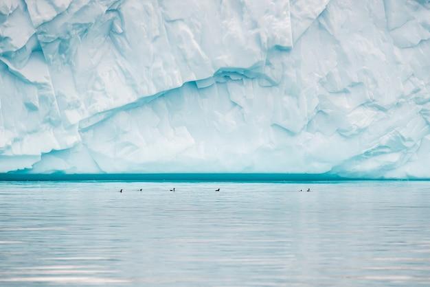 Piękny widok na masywną górę lodową w disko bay na grenlandii