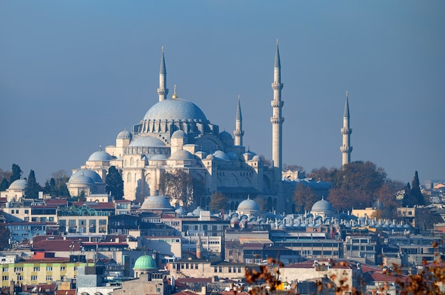 Piękny widok na meczet suleymaniye stambuł turcja