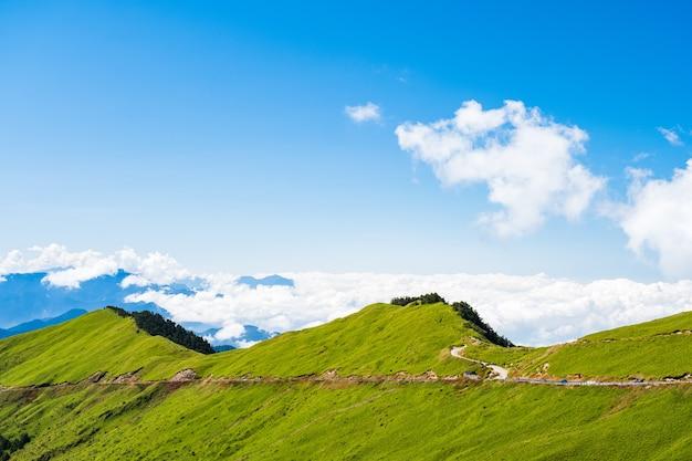 Piękny widok na panoramę scenerii zielonej bambusowej trawy na górze z błękitnym niebem na hehuanshan main peak, wuling, nantou county, tajwan