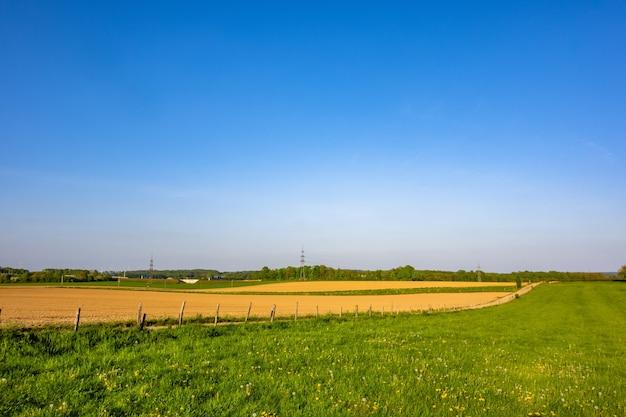 Piękny widok na pola uprawne z wyraźnym horyzontem uchwycony w jasny, słoneczny dzień