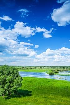 Piękny widok na pole powodziowe z niebieskim pochmurnym niebem w wiosennym instagramie ramiaku