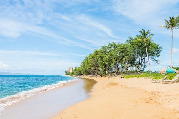 Piękny widok na przyrodę z palmami i czystym błękitnym niebem na tropikalnej rajskiej wyspie