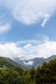 Piękny widok na przyrodę?