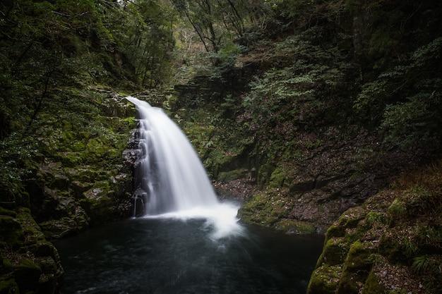 Piękny widok na wodospad akame 48, japonia?