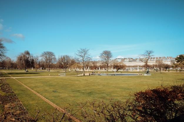 Piękny widok na zielony ogród pod błękitnym niebem zrobiony w paryżu we francji