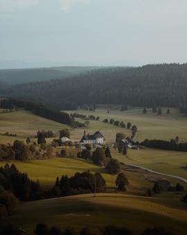 Piękny widok w lesie z małym, wiejskim domkiem otoczonym jodłami