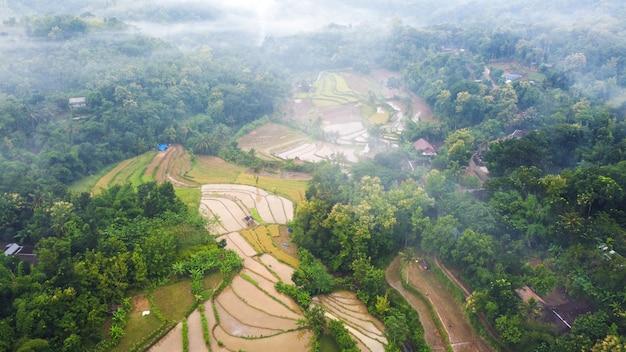 Piękny widok z lotu ptaka na tarasy ryżowe z poranną mgłą