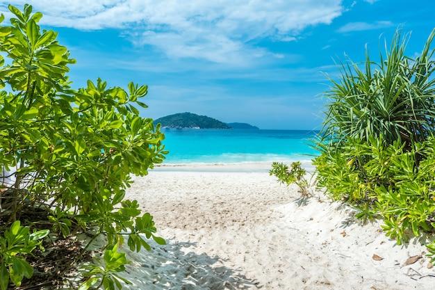 Piękny widok z niebieskim niebem i chmurami, błękitnym morzem i białą piasek plażą na similan wyspie