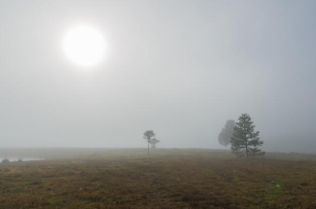 Piękny wiejski krajobraz gospodarstwa w pochmurny dzień.